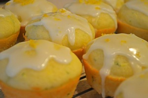 lemonzuchinnimuffins