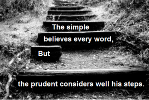 Proverbs14.15