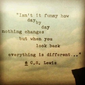 day-by-day-cs-lewis-picture-quote