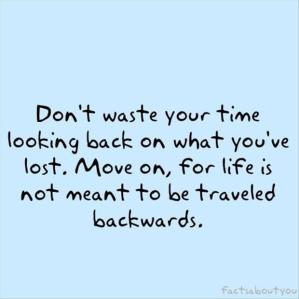 Quotes-A-Day-Waste-Of-Time-Quote